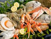 pranzo di pesce 2016